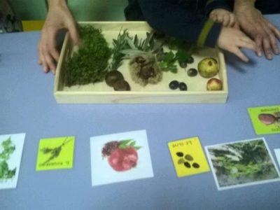 5-Angolo-delle-scoperte-scientifiche (8)